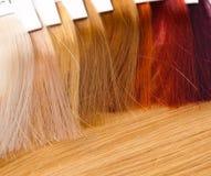 Dyed locks of hair. For hairdresser Stock Photos