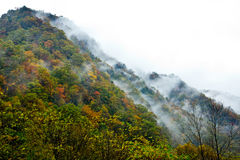 Dyed Mountains and Forests,Cloud and Mist Royalty Free Stock Photo