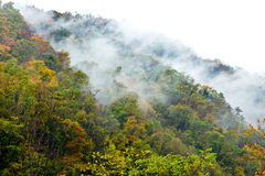 Dyed Mountains and Forests,Cloud and Mist. In Taibai county of Western China royalty free stock photos