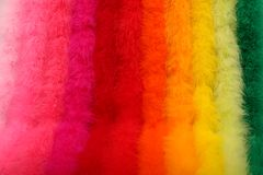 Free Dyed Ostrich Feather Boas Royalty Free Stock Images - 10133979