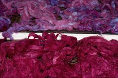 Dyed sheep wool. Purple red dyed sheep wool laying out to dry royalty free stock image