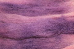 Dyed sheep wool roving. Dyed American Tunis sheep wool roving stock images