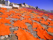 Dyed sheepskins drying in cemetry. Dyed sheepskins, drying in cemetry in Fez, Morocco, while the owners stand guard Stock Image