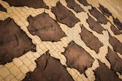Dyed skins. Marrakesh. Morocco Royalty Free Stock Image