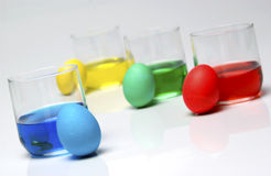 Dyeing Easter eggs. Blue, yellow, green and red dye with Easter eggs Stock Photo