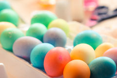 Dyeing eggs. Colorful Easter eggs dry after being dyed Royalty Free Stock Images