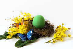 Dyeing eggs for Easter Royalty Free Stock Photography