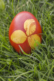 Dyeing Printed Easter Egg Stock Images