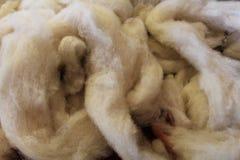 Dyeing sheep wool. Preparing raw sheep wool to be dyed in acid bath Stock Image