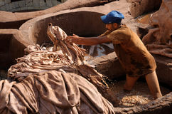 Dyeing skins in tanneries Stock Photo