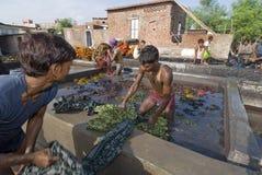 Dyers indios de trabajo Foto de archivo libre de regalías