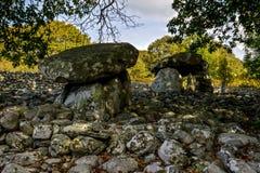 Dyffryn Ardudwy burial chamber Stock Images