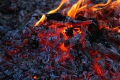 Dying bonfire Royalty Free Stock Photo