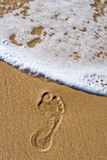 Dying footprint royalty free stock images