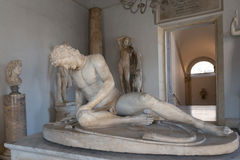 Dying Gaul Stock Image