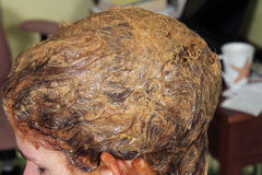 Dying Hair (9) Stock Photo