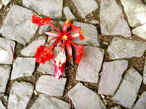 Dying lily flower on dirty cobbled paving. A fallen lilly like red flower dying on a dirty cobble stone path stock image