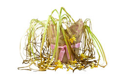 Dying Yellow Daffodils in Pot Decorated with a Pink Ribbon Stock Photos