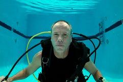 Dyk i en pöl royaltyfri fotografi