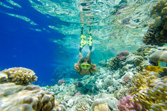 Dyka för flicka som är undervattens- Arkivbilder