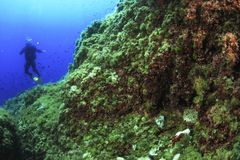 Dyka i medelhavet - Majorca royaltyfria foton