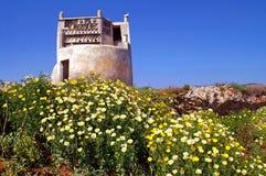 Dyka-skjul på den Tinos ön, Cyclades, Grekland Royaltyfri Fotografi