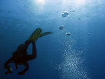 dykare för 106 bubblor Royaltyfri Foto