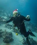 Dykare i en julhatt Fotografering för Bildbyråer