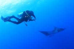 Dykare med mantastrålen på Socorro Island, Mexico Royaltyfri Fotografi