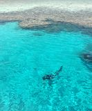 Dykare och korall i Röda havet arkivfoton