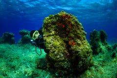 Dykare på botten av havet med vattenyttersida fotografering för bildbyråer