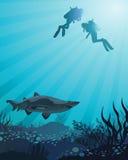 Dykare som ser till hajen Arkivfoto