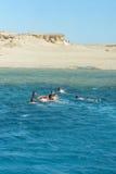 Dykare som simmar i havet Arkivbild