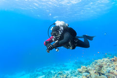 Dykare som svävar över korallreven Royaltyfri Foto
