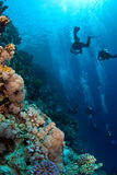 dykare som undersöker scubaen Arkivbild