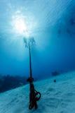 Dykare stiger ned ankarrepet som sammanfogar andra på korallreven Arkivbild