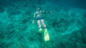 Dykarebad under vatten på havgolvet och stiger därefter till yttersidan för att andas luft Turist- förlovad dykning nära a arkivfilmer