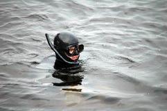 Dykareman med maskeringen i vatten royaltyfri fotografi