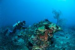 Dykaren är simma och ta bilden i Gili, Lombok, Nusa Tenggara Barat, Indonesien det undervattens- fotoet Royaltyfria Bilder