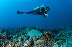 Dykaren simmar ovanför korallreverna i Gili, Lombok, Nusa Tenggara Barat, Indonesien det undervattens- fotoet Royaltyfria Bilder