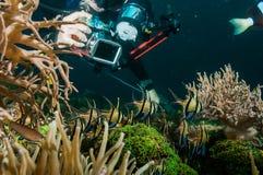 Dykaren tar ett foto video dykning för den lembehindonesia dykapparaten Royaltyfria Bilder