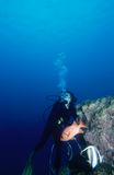 dykningkvinna Royaltyfria Bilder