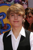 Dylan Sprouse Royalty Free Stock Photography