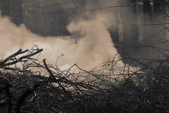 Dym od palenie suchych gałąź Monochromatyczna fotografia fotografia royalty free