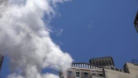 Dym, Pali ogienia, zanieczyszczenie powietrza zbiory wideo