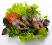 dymiąca skład makrela Zdjęcia Stock