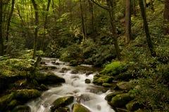 dymiący góry wielki park narodowy zdjęcie royalty free