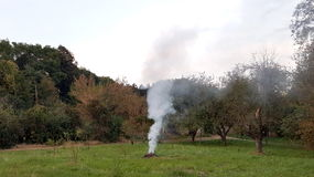 Dymiący ognisko opuszczać bez nadzoru między drzewami fotografia stock