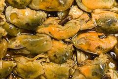 dymiący tło mussels Obrazy Stock