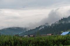 Dymiący las Obrazy Stock